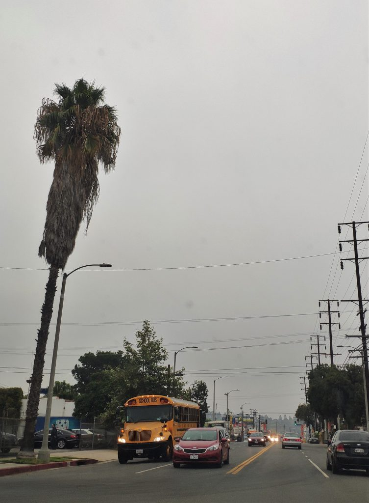 school bus california
